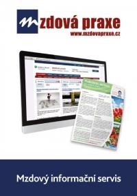 Mzdový informační servis (Online)