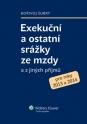 Exekuční a ostatní srážky ze mzdy a z jiných příjmů (E-kniha)