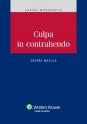 Culpa in contrahendo (E-kniha)