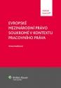 Evropské mezinárodní právo soukromé v kontextu pracovního práva (E-kniha)
