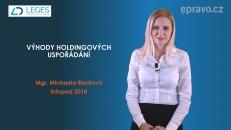 Výhody holdingového uspořádání, vytvoření holdingové struktury